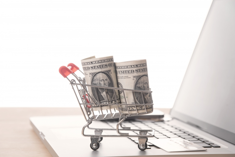 Shopping cart with dollar money on computer