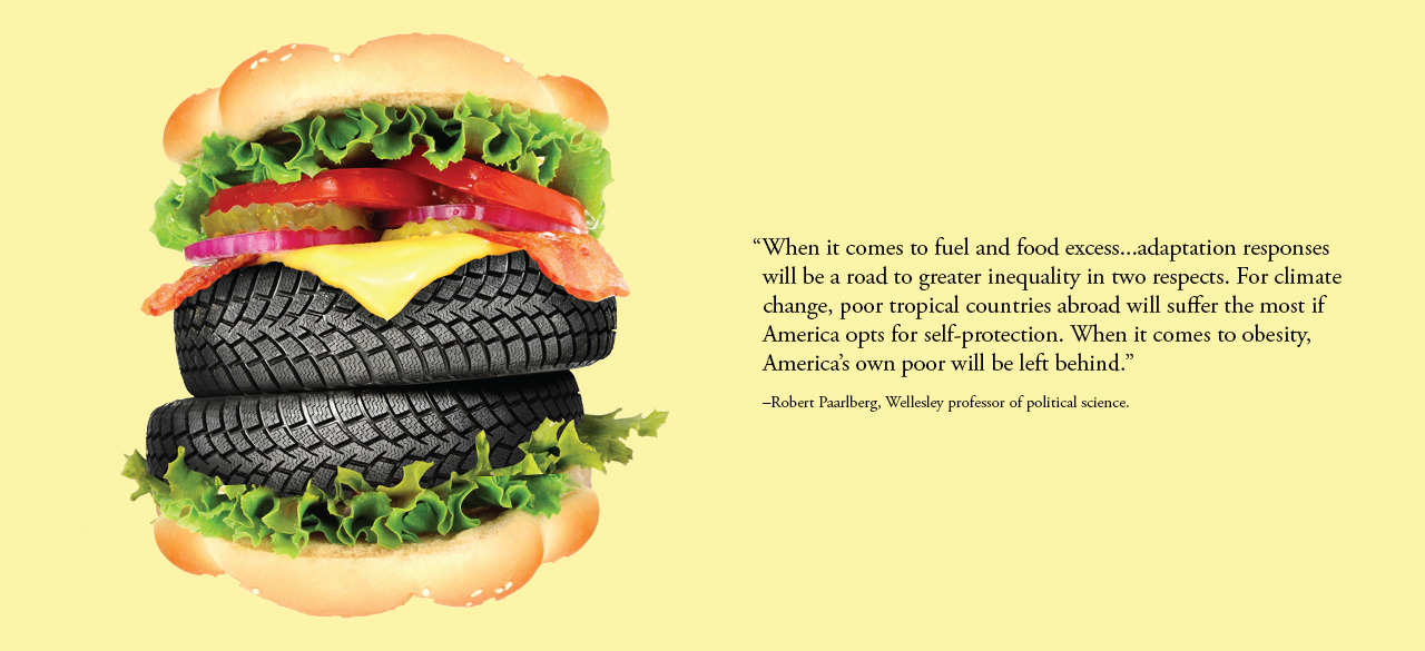 A hamburger with tires replacing the meat, an image from Robert Paarlberg's new book