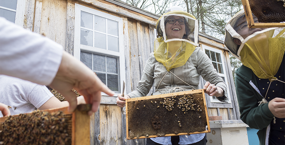 Wellesley Professor Heather Mattila near honey bee hives