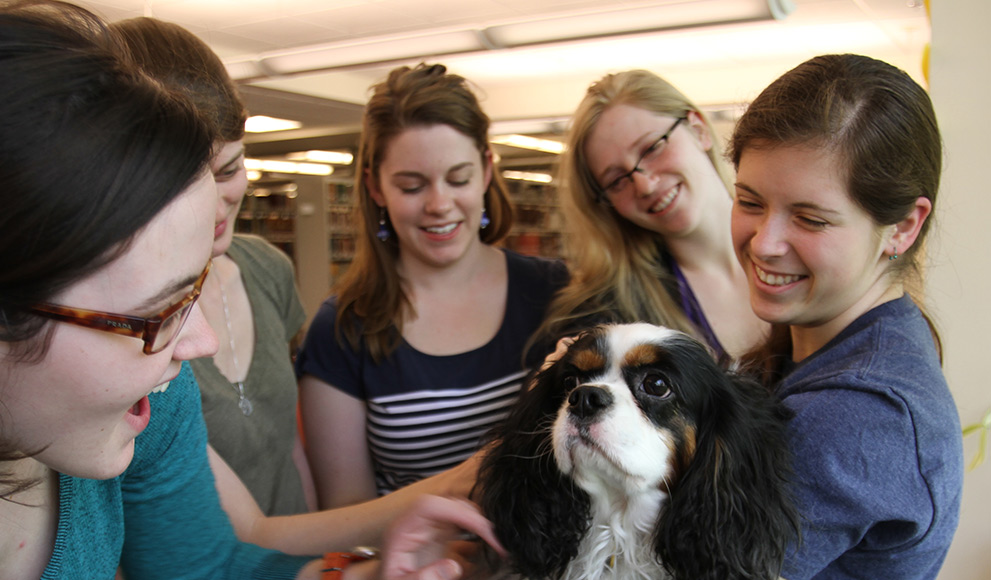 Students visit with a therapy dog during reading period.