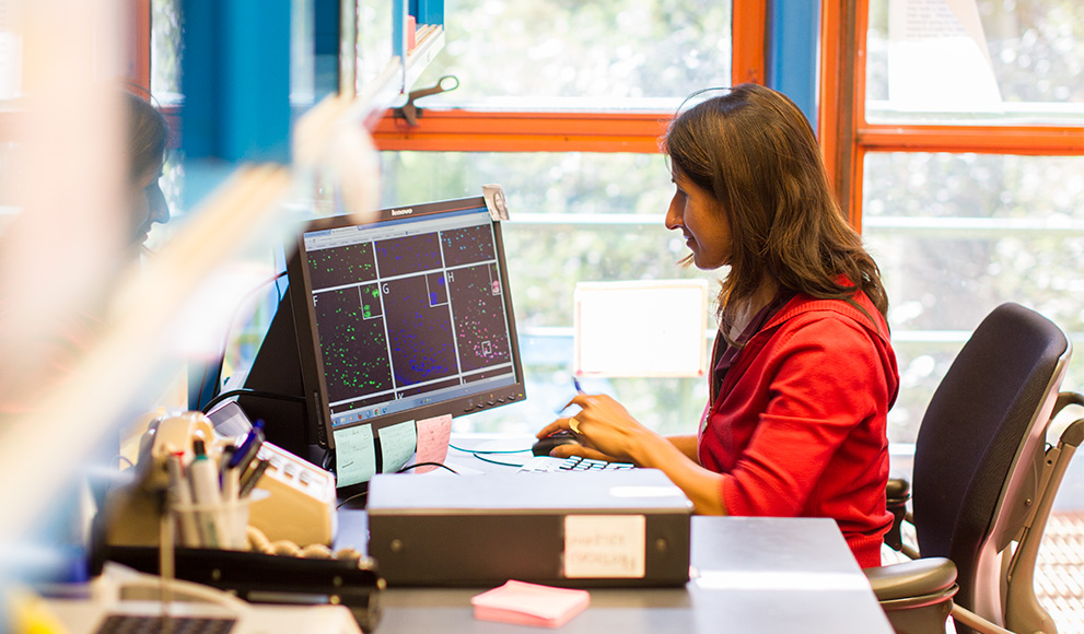 Postdoctoral fellow Kalpana D. Acharya, working in the Tetel lab in the Science Center