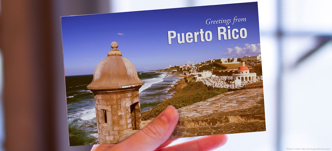 """Hand holds a postcard that reads """"Greetings from Puerto Rico"""""""