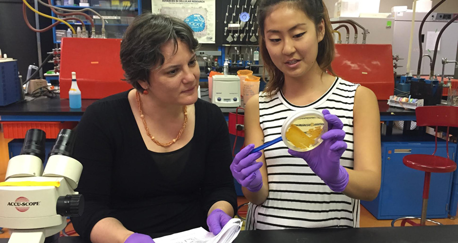 Prof. Vanja Klepac-Ceraj and Serry Park '16 examine a petri dish