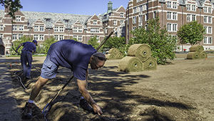two wellesley workers prep ground for new sod