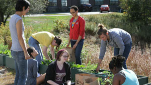 ES103 students working the farm in a box outdoors