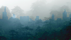 dual image of misty forest overlaid on urban landscape