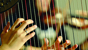 closeup of hands on harp