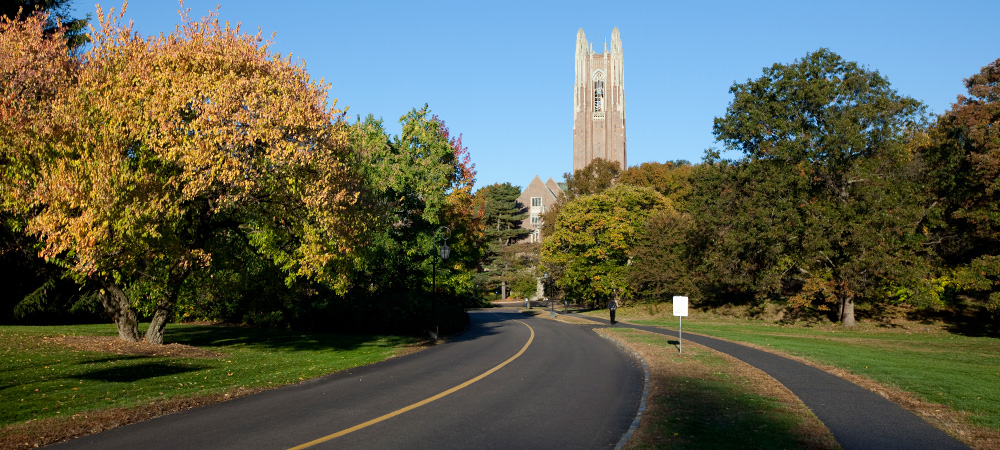 Road Leading into Campus in the Fall