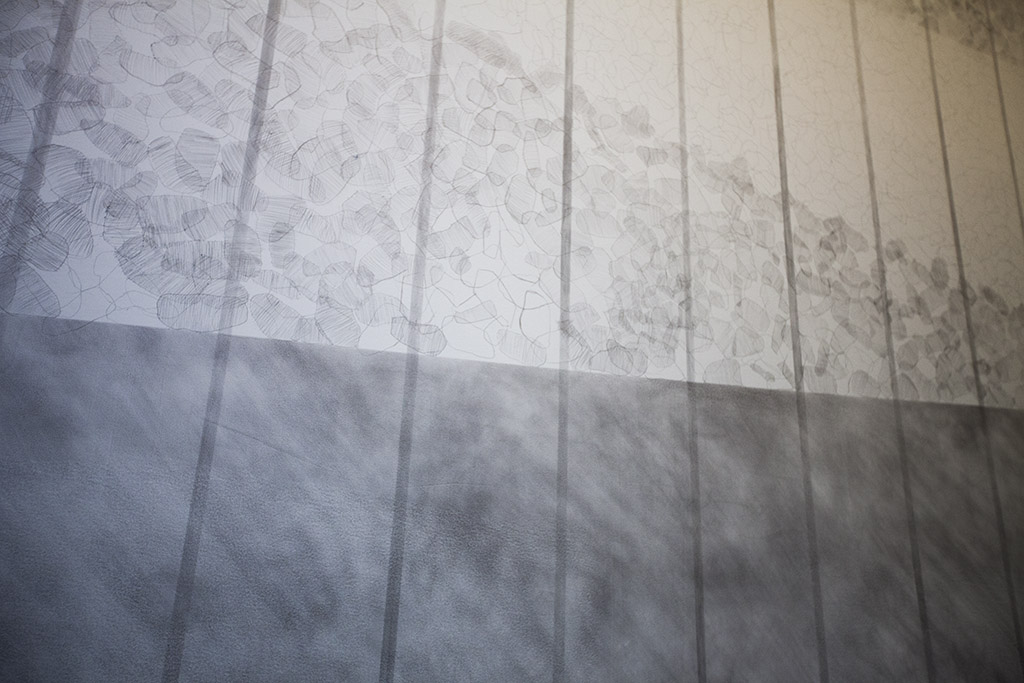 Detail image of Daniela Rivera's large copperpoint wall drawing.