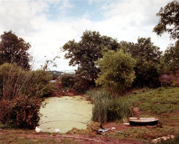 Jem Southam, Upton Pyne, July 1996. Chromogenic dye coupler print. (c) Jem Southam, courtesy of Charles Isaacs Photographs and Robert Mann Gallery.