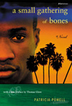 "cover of book by Patricia Powell entitled ""A Small Gathering of Bones"""