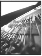 Bosendorfer piano photo