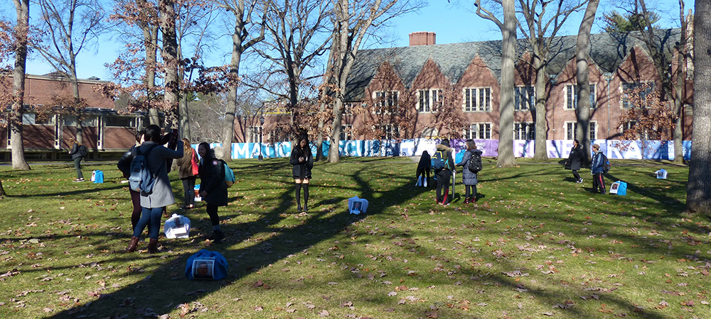 Wellesley Academic Quad with blue and white bojagi and people looking at them.