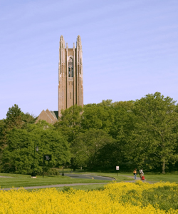 Wellesley College in summer