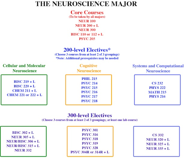 Neuroscience Major Requirements