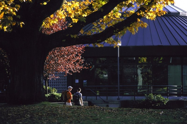 UBC campus building and trees