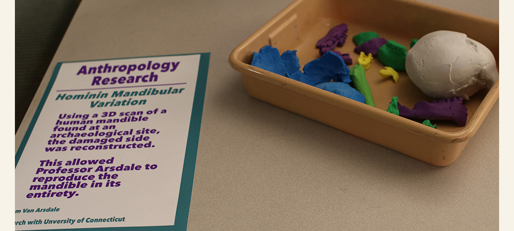Colorful 3D printed bones next to an explanation of the anthropology research project