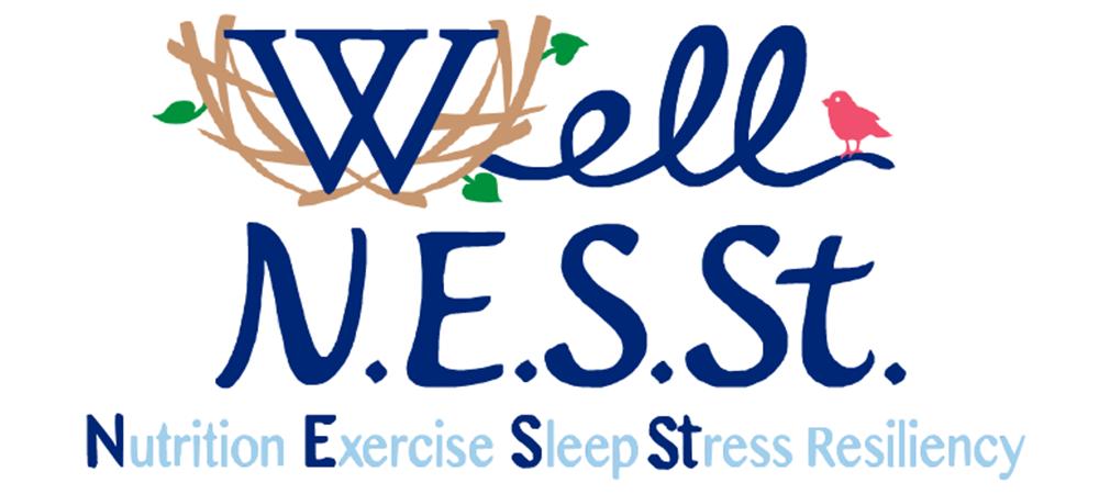 Well NESST logo