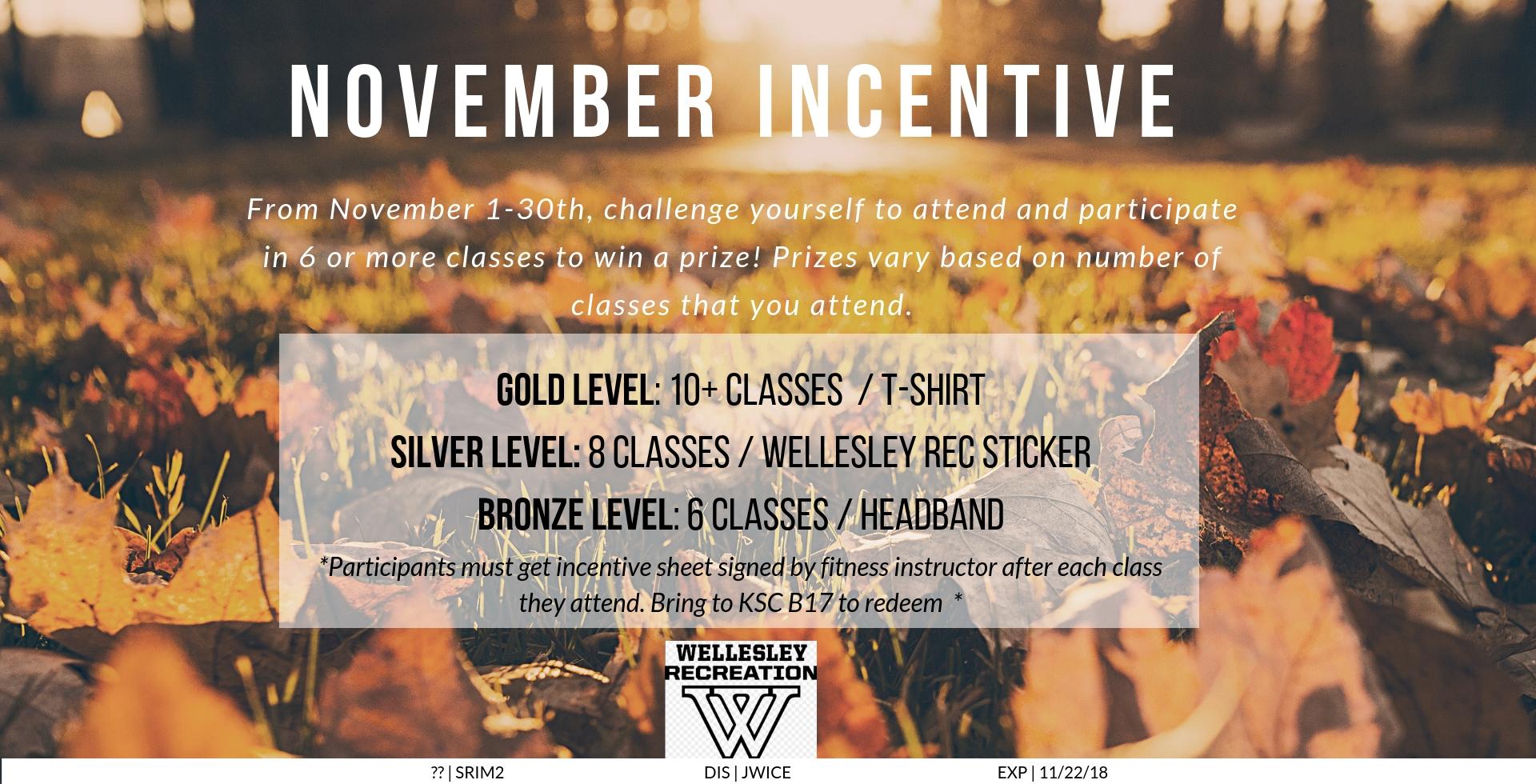 November Fitness Incentive