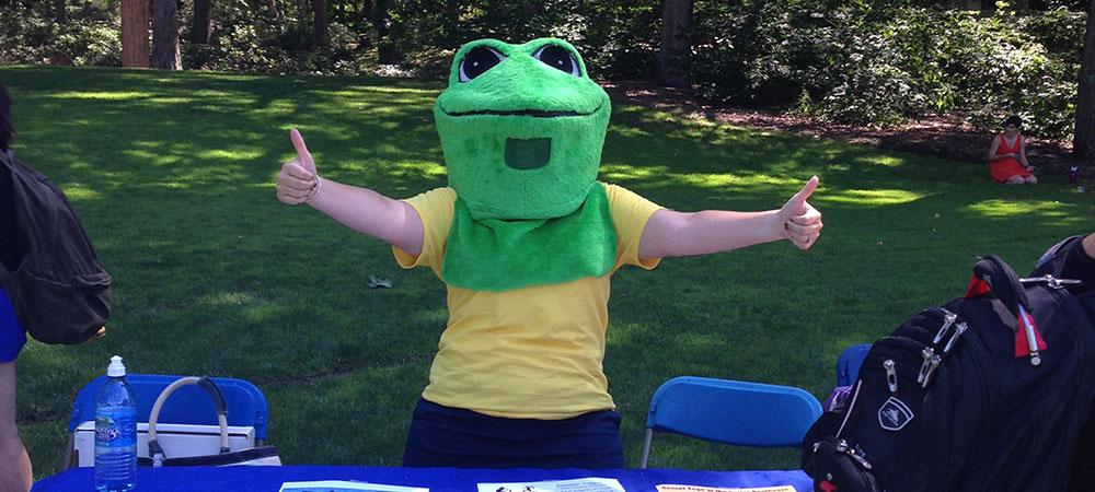 SBOG Frog