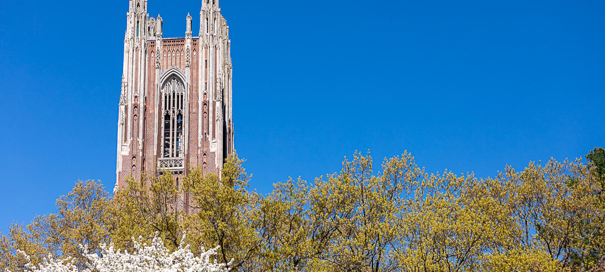 Picture of Wellesley tower, spring day, apple blossoms, blue sky.