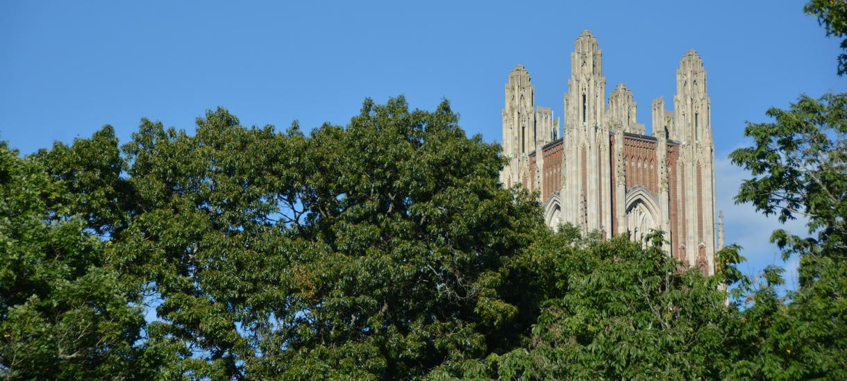 Picture of the Wellesley bell tower through the surrounding foliage.