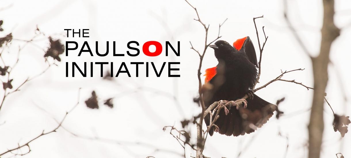 Winterfest Paulson Initiative logo