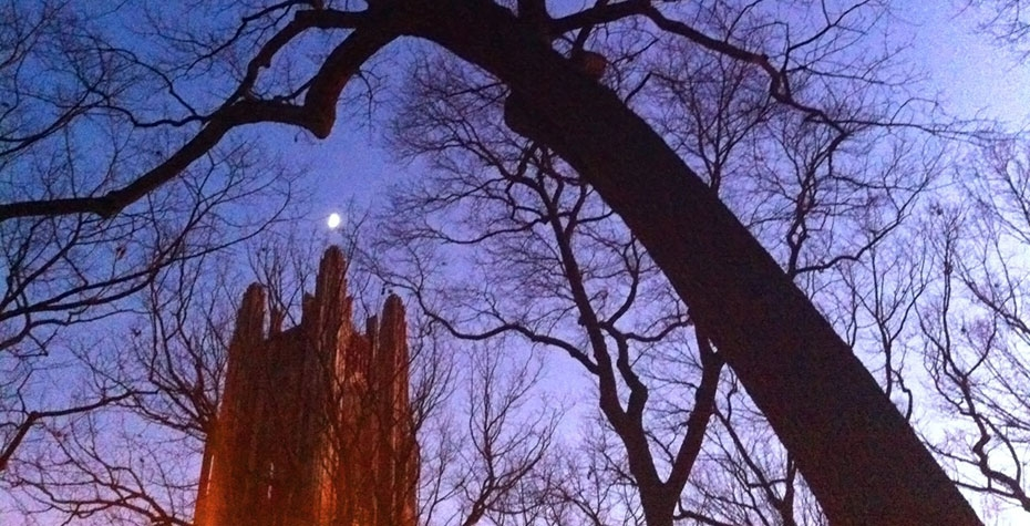 moon over Galen Stone Tower in twilight sky with silhouetted trees, by Kat Chen