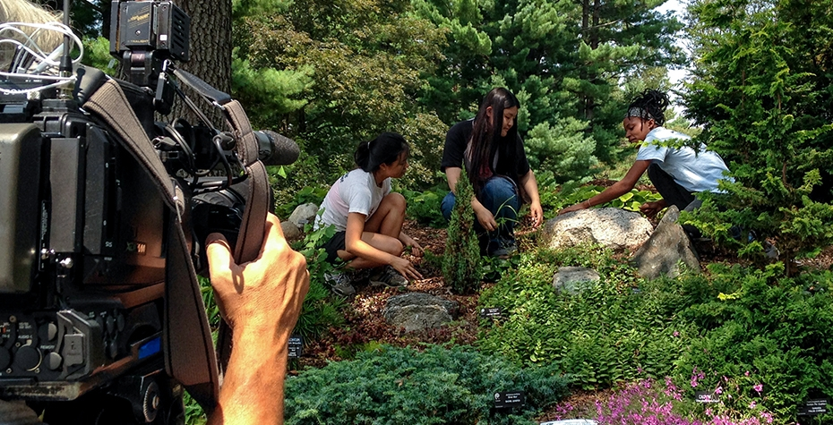 view over camera man's shoulder of three students tending to plants