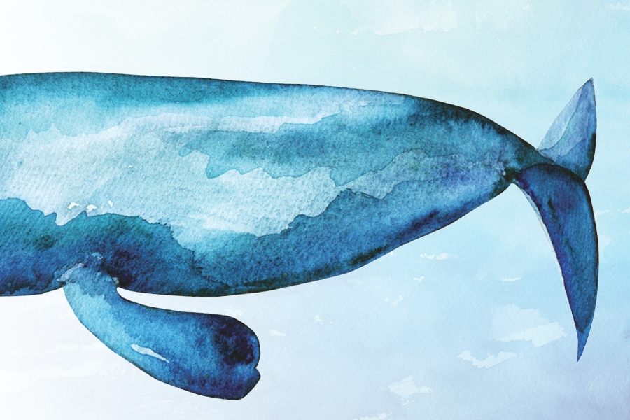 water color painting of a blue whale against a blue background
