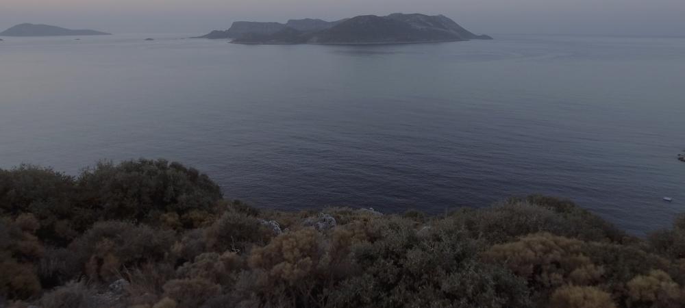 Horizon, 2016