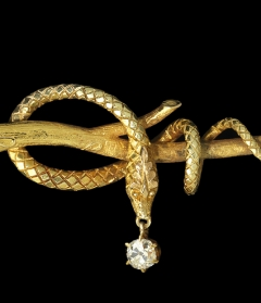 Serpent Pin, circa 1860. Designer unknown. Photo by John Bigelow Taylor