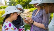 Students and professor examine an insect during a late summer bio survey in Wellesley's Edible Ecosystem Garden