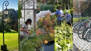 Five photo panels depicting sustainability initiatives at Wellesley.