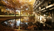 Clapp library exterior with pool in golden autumn light