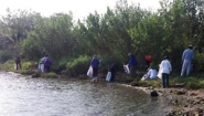 Wellesley's Biscayne Bay trash pickup crew