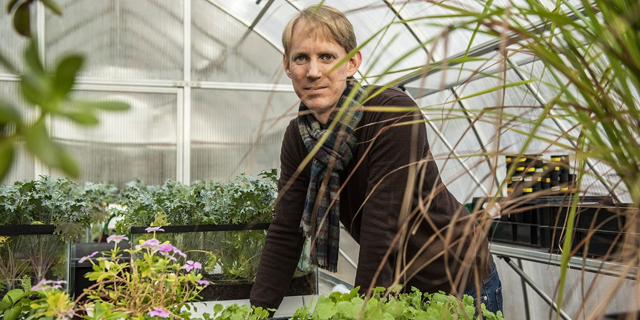 A male professor stands in a greenhouse