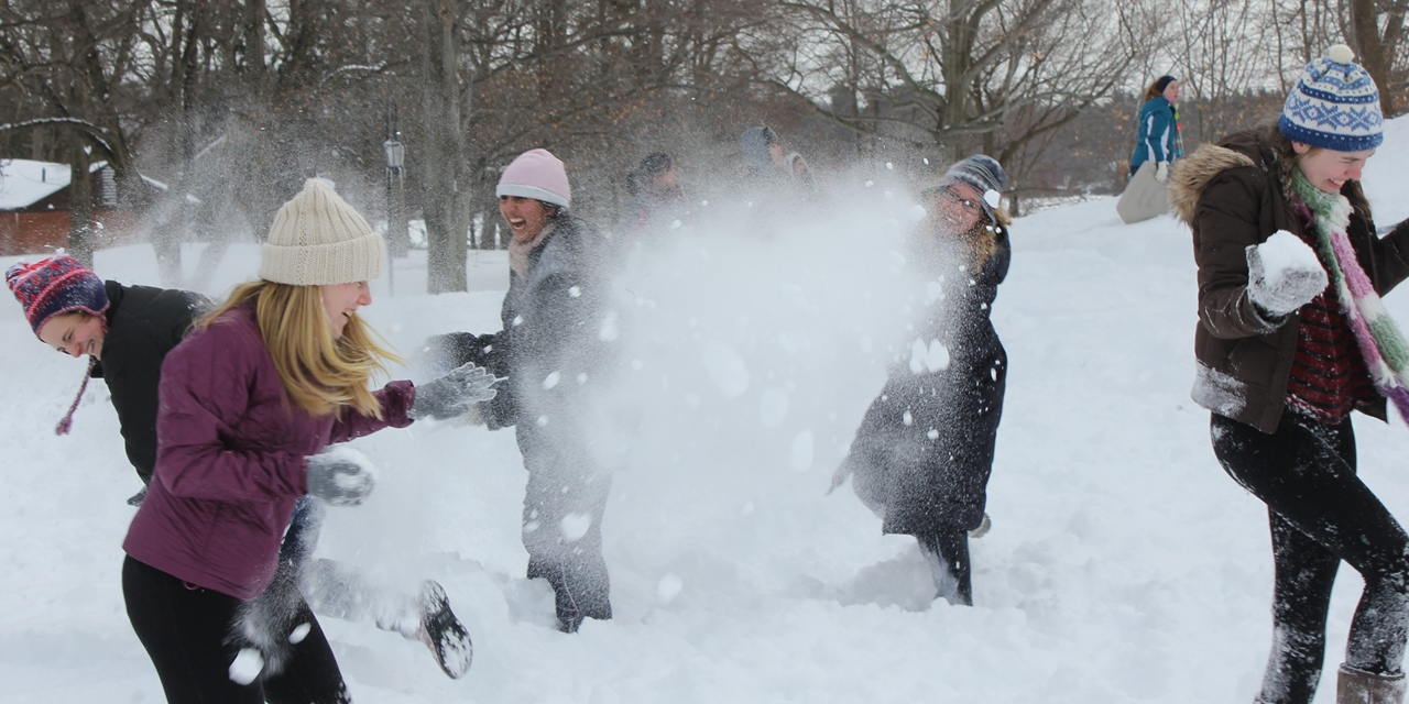 Snowball fights, 2013