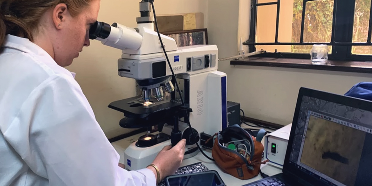 A student (Georgia Oppenheimer) looking in a microscope to analyze sample.