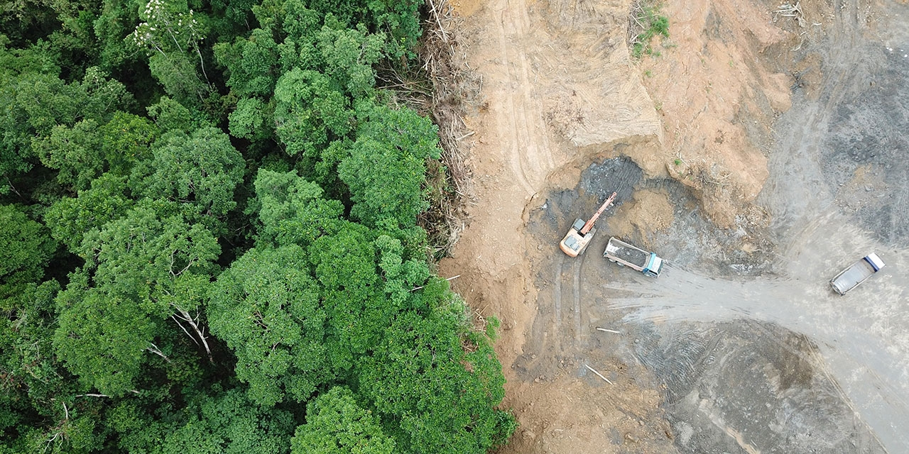An arial shot of a forrest and land that has been cleared.