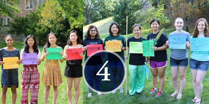 students count down: 4