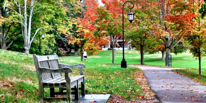 The Start of Fall Foliage