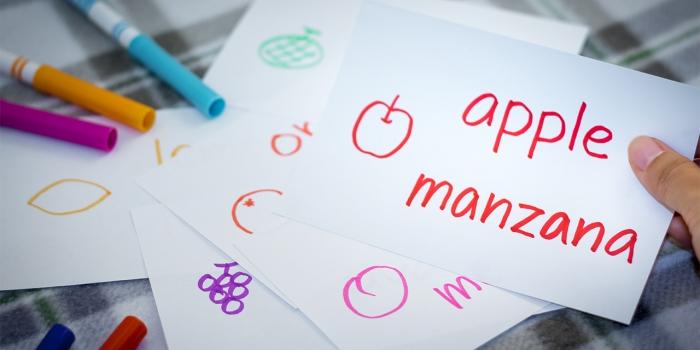 apple / manzana