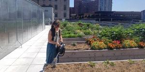 A young woman works in a rooftop garden