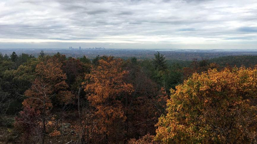 View from the the top of a hill in the woods with the Boston skyline in the background