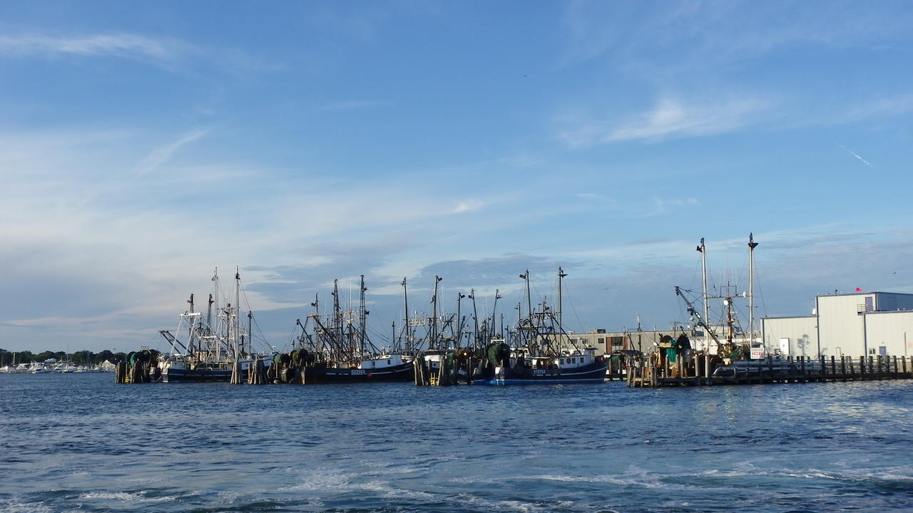 Boats are lined up at a dock in a port in the morning.