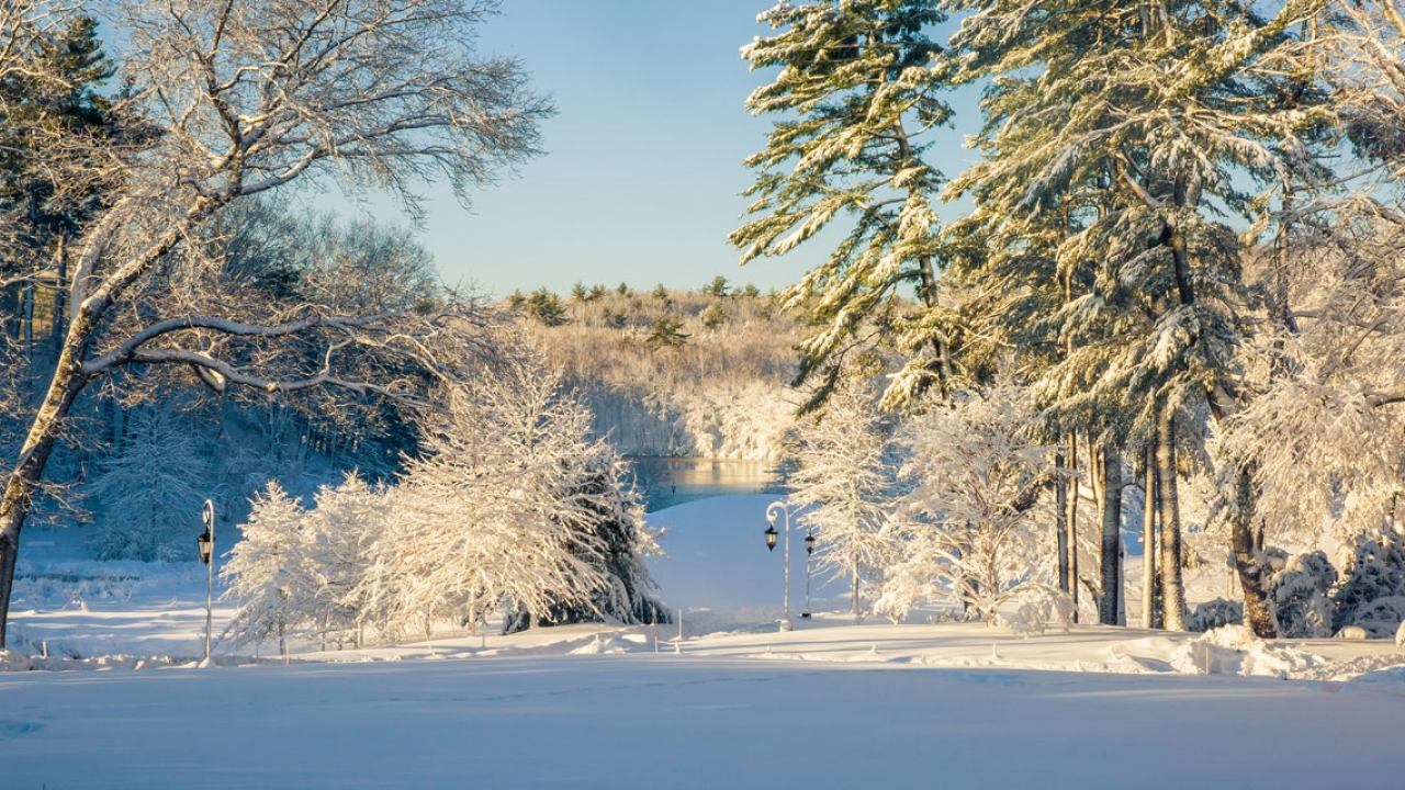 snow-covered Alumnae Valley after the blizzard
