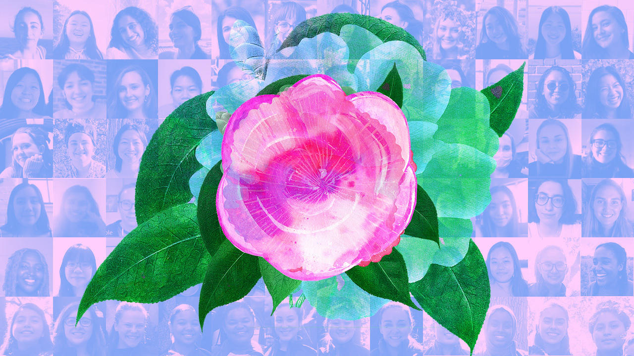 pink camellia flower over a collage of headshots