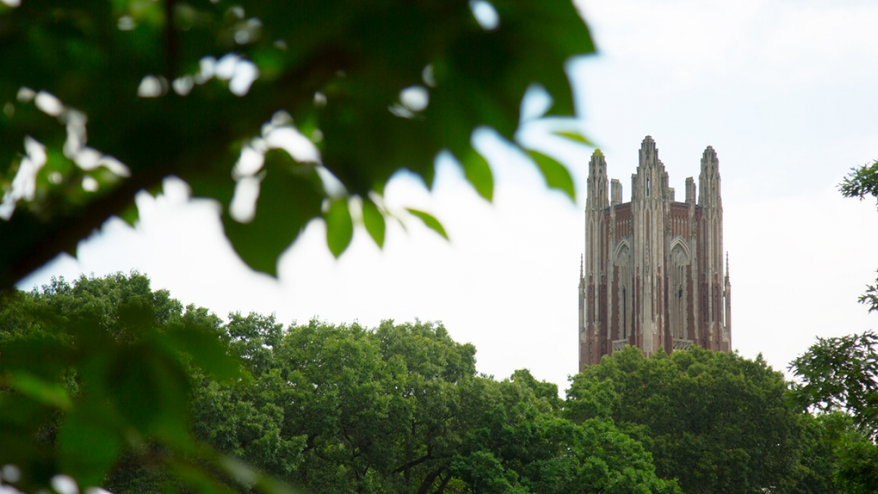 Galen Stone Tower as seen from Severance Hill and framed by green foliage.