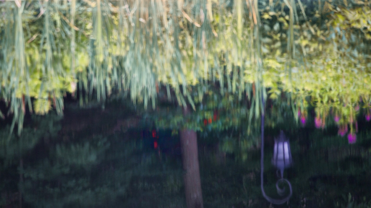 A reflection of a Wellesley lamp post in Paramecium Pond.